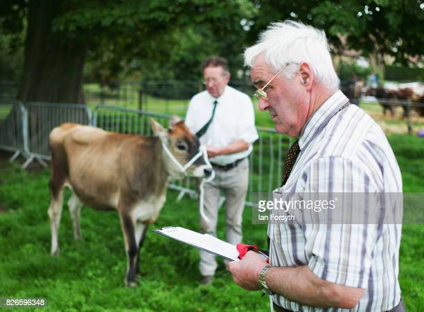 Judge observes the cattle class as they are led around an arena during the Osmotherley Country Show on August 5, 2017 in Osmotherley, England. The...
