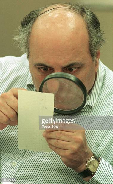 Judge Robert Rosenberg of Broward County Canvassing Board uses a magnifying glass to view a dimpled chad on a punchhole ballot November 24 2000...