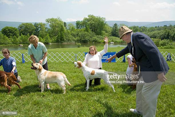 Judge selecting winner at dog show