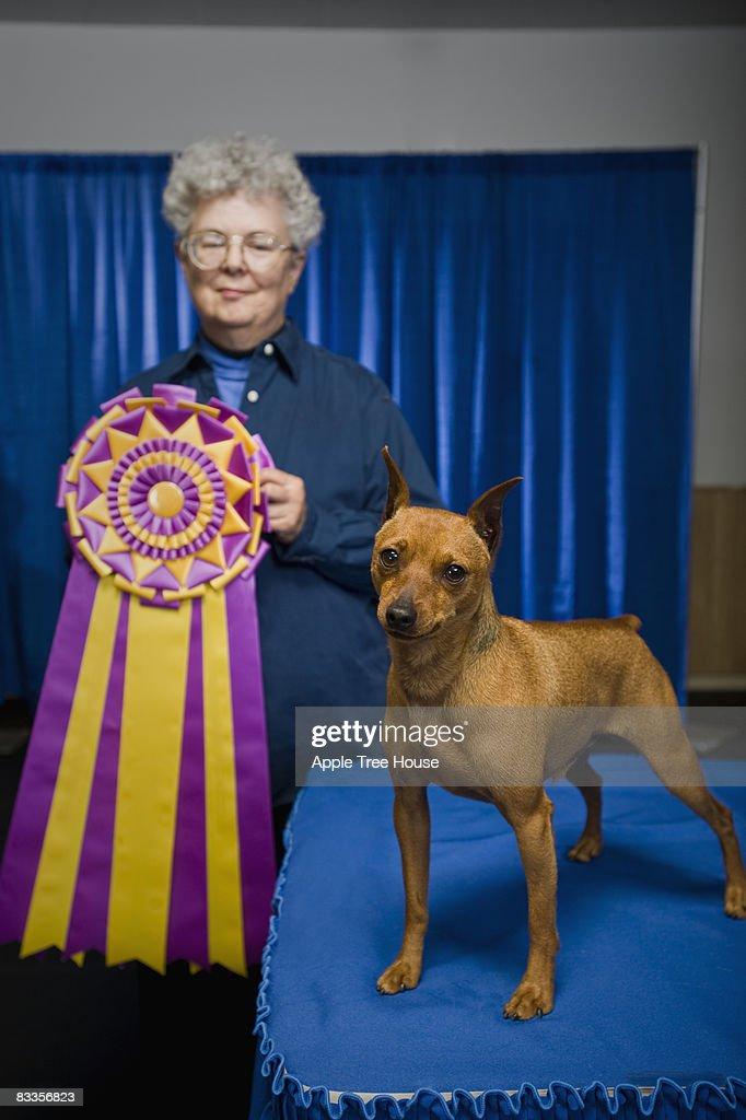 Judge with small dog and championship ribbon : Stock Photo