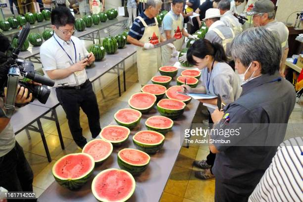 Judges examine watermelons during the contest on July 9 2019 in Tsurugi Tokushima Japan