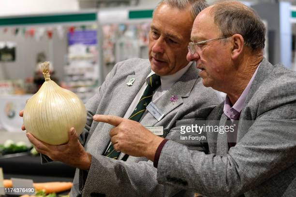 Judges inspect an onion during judging for the giant vegetable competition at the Harrogate Autumn Flower Show on September 13 2019 in Harrogate...