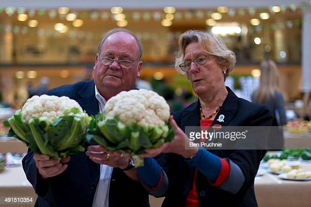 Judges inspect the cauliflower during the RHS London Harvest Festival Show at RHS Lindley Halls on October 6 2015 in London England The traditional...