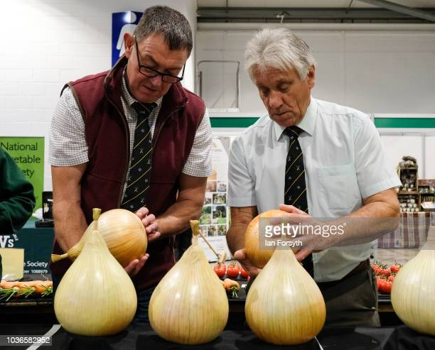 Judges inspect the dressed onions on the first day of the Harrogate Autumn Flower Show held at the Great Yorkshire Showground on September 14 2018 in...