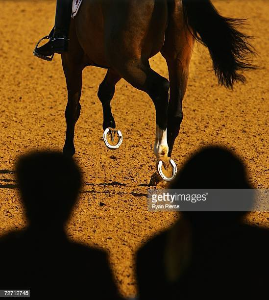 Judges look on as a horse completes a test during the Equestrian Dressage Team Final during day four of the 15th Asian Games Doha 2006 at Doha...