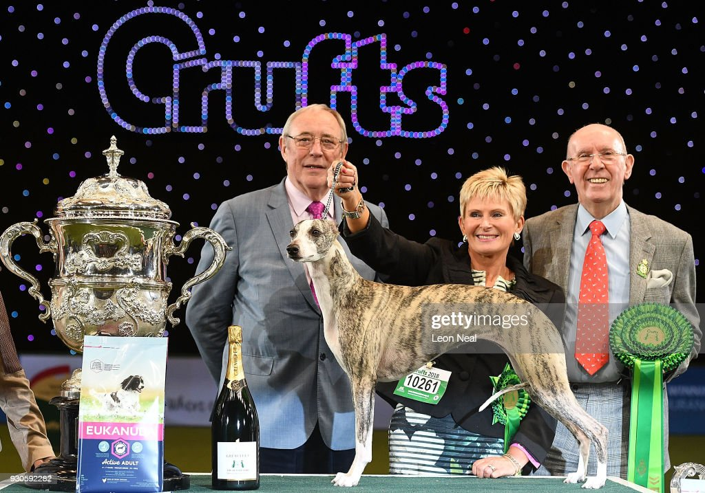 Judges stand next to Tease the Whippet and its owner (C) Yvette Short after they won Best In Show on day four of the Cruft's dog show at the NEC Arena on March 11, 2018 in Birmingham, England.