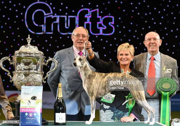 Judges stand next to Tease the Whippet and its owner Yvette Short after they won Best In Show on day four of the Cruft's dog show at the NEC Arena on...
