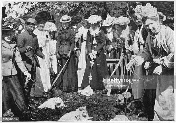 Judging cats at the Royal Botanic Gardens show Kew London circa 1900 Harrison Weir arranged the first formal cat show in England in 1871 at the...