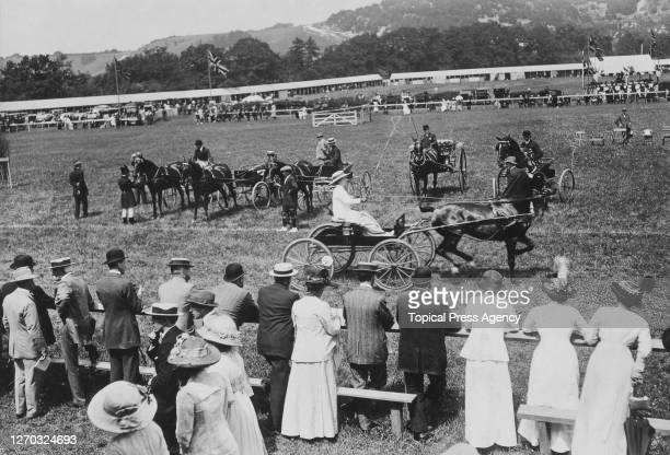 Judging class 39, horses in harness, at the Reigate Horse And Hound Show, Surrey, 28th May 1913. Mrs Edwin Goad drives Mathias Pick 'Em Up in a...
