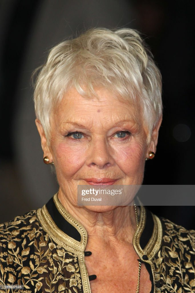 """Philomena"" - American Express Gala - Red Carpet Arrivals: 57th BFI London Film Festival : News Photo"
