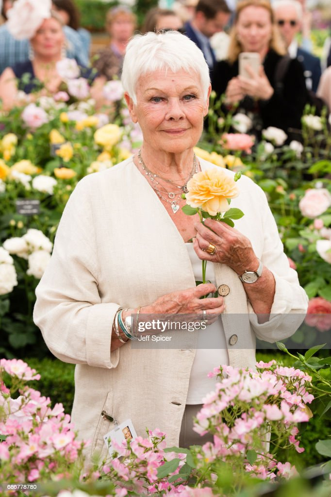 Judi Dench attends RHS Chelsea Flower Show press day at Royal Hospital Chelsea on May 22, 2017 in London, England.