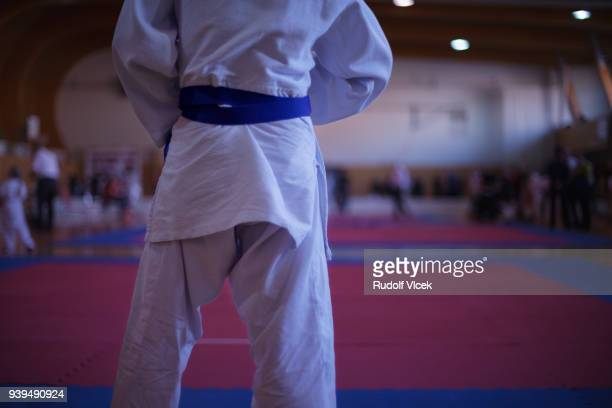 judo fighter on tatami mat in a gym - judo stock pictures, royalty-free photos & images