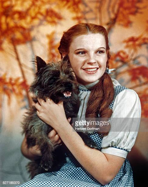 Judy Garland as character Dorothy Gale holds Toto in a publicity still for The Wizard of Oz
