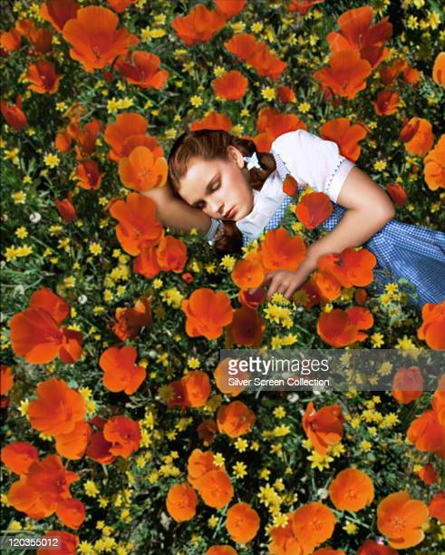 Judy Garland US actress and singer sleeping in a field of red poppies and yellow flowers in a publicity still issued for the film 'The Wizard of Oz'...