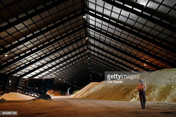 Judy Sanchez walks near a pile of raw sugar at the US Sugar Corporation plant December 18 2008 in Clewiston Florida This week the South Florida Water...