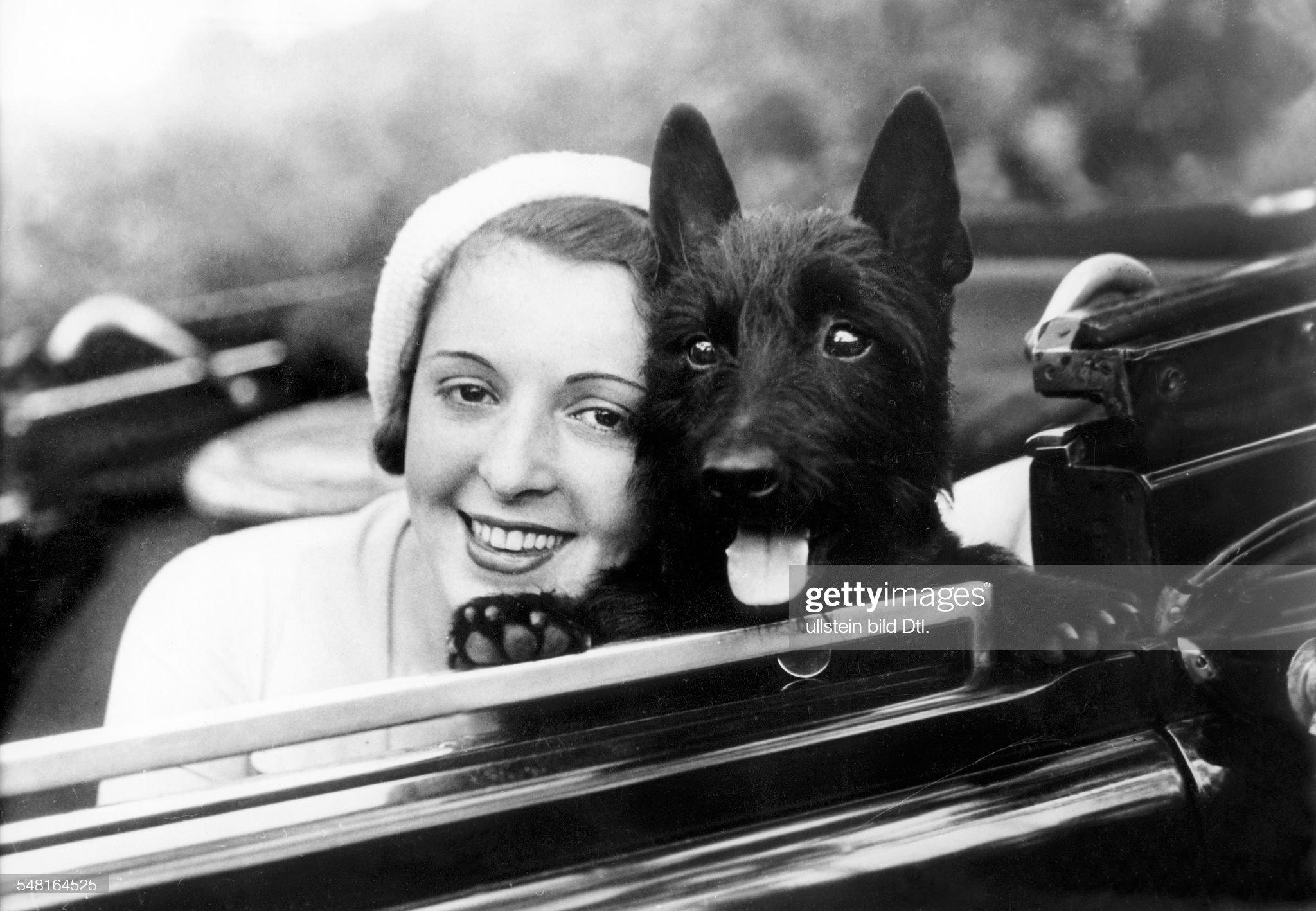 Jugo, Jenny - Actress, Austria - *14.06.1904-30.09.2001+ sitting in a car with her dog - undated Photographer: Zander und Labisch - Vintage property of ullstein bild : News Photo