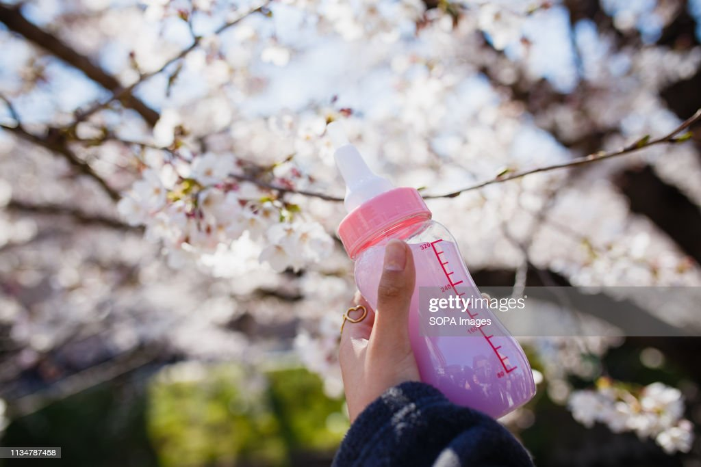 Juice seen in a baby bottle during the Iwakura Cherry... : News Photo