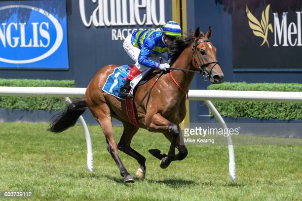 Jukebox ridden by Craig Williams wins Inglis Premier at Caulfield Racecourse on February 04 2017 in Caulfield Australia