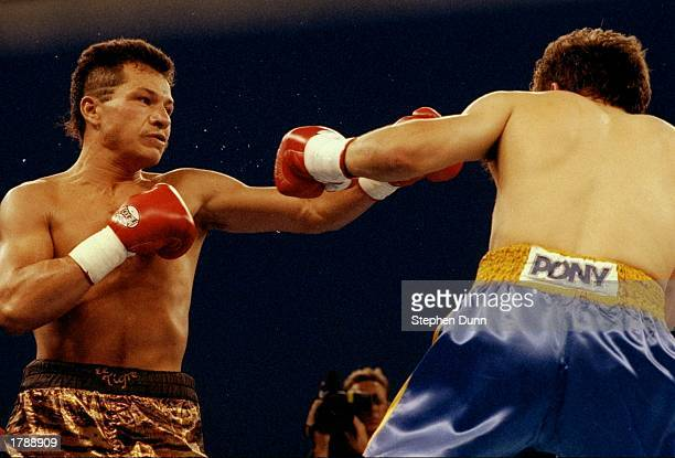 Tony Lopez and Lupe Gutierrez trade blows during a bout at Lake Tahoe Mandatory Credit Stephen Dunn /Allsport