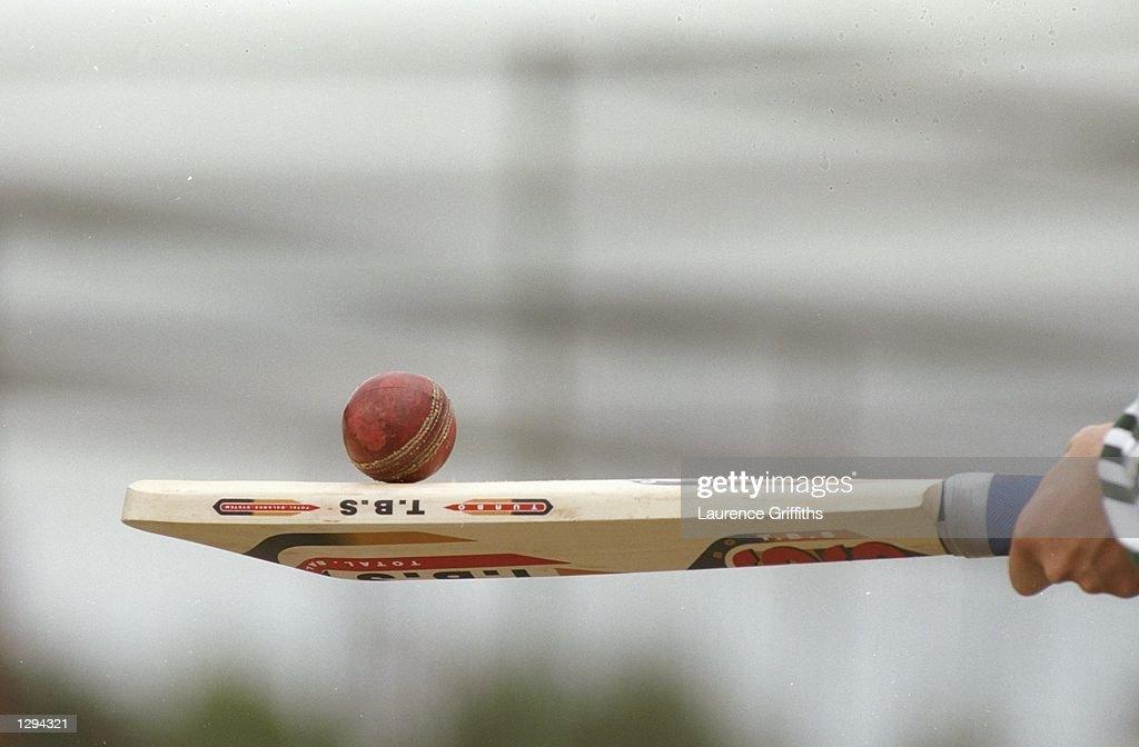 A cricket bat and ball : News Photo