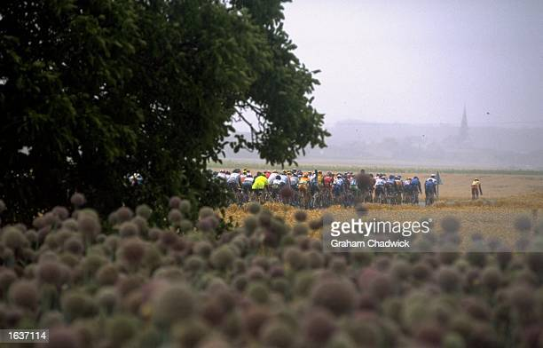 The peleton passes through a field during Stage 5 of the 1998 Tour De France from CholetChateauroux France Mandatory Credit Graham Chadwick /Allsport