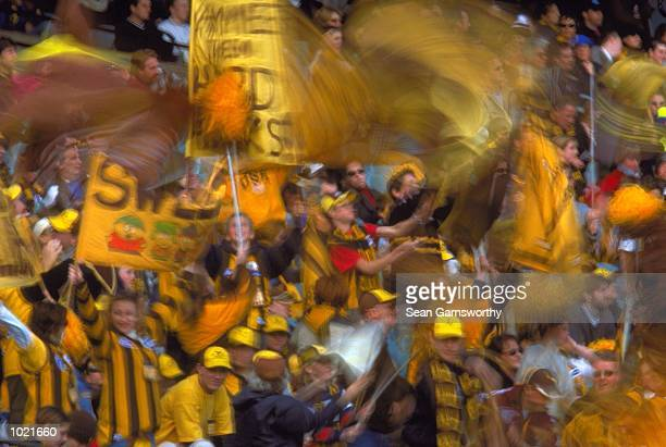Hawthorn fans celebrate a goal in the match between the Hawthorn Hawks and Port Adelaide Power during round 20 of the AFL season played at the MCG in...