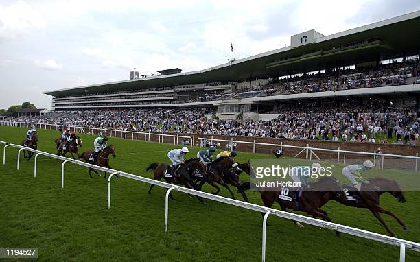 Runners pass the stands during The John Guest Brown Jack Stakes run at Ascot which was won by Francis Norton and Taffrail. DIGITAL IMAGE Mandatory...