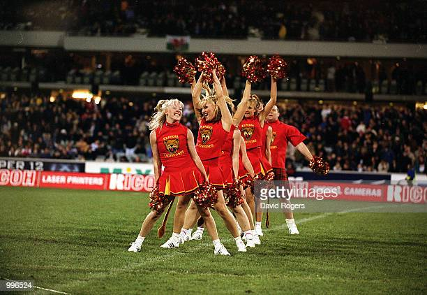 The Expedia Lionesses perform at halftime during the match between the British and Irish Lions and the ACT Brumbies played at Bruce Stadium Canberra...