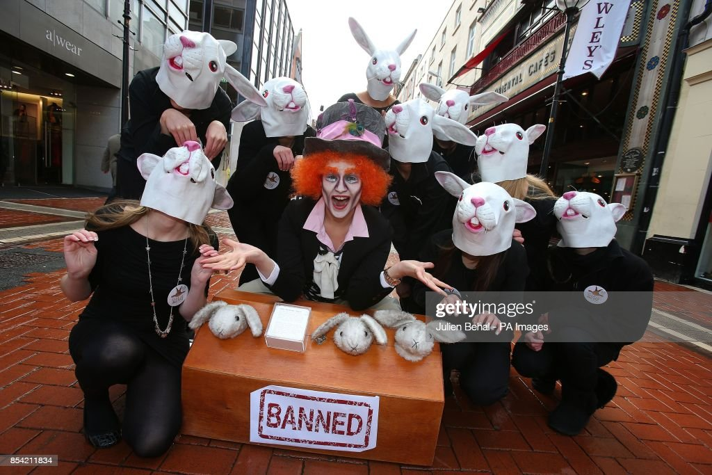 EU ban on animal testing of cosmetics : News Photo