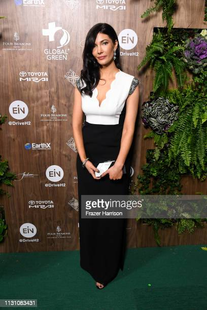 Julia Jackson attends the Global Green 2019 PreOscar Gala at Four Seasons Hotel Los Angeles at Beverly Hills on February 20 2019 in Los Angeles...