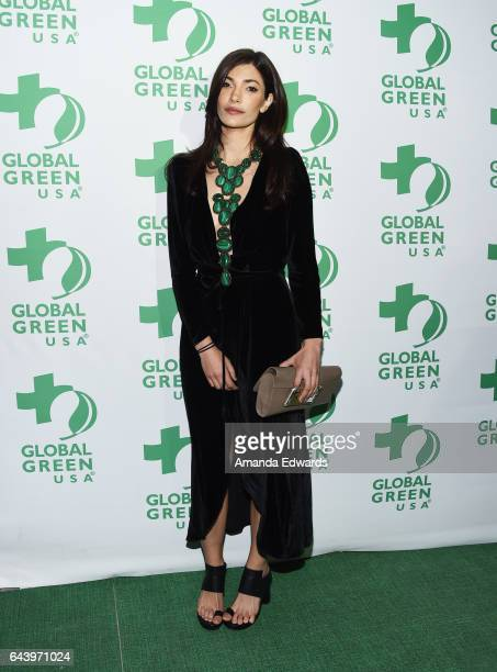 Julia Jackson of Jackson Family Wines arrives at the 14th Annual Global Green PreOscar Gala at TAO Hollywood on February 22 2017 in Los Angeles...