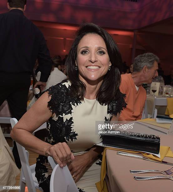 Julia LouisDreyfus attends 826LA's 10th Anniversary Gala at Santa Monica Bay Woman's Club on June 16 2015 in Santa Monica California
