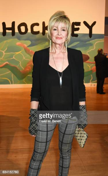 Julia Somerville attends a private view of the David Hockney retrospective at the Tate Britain on February 7, 2017 in London, England.