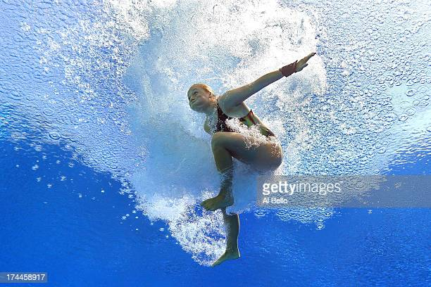 Julia Vincent of South Africa competes in the Women's 3m Springboard Diving preliminary round on day seven of the 15th FINA World Championships at...