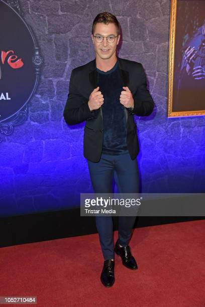 Julian David attends the musical premiere of 'Tanz der Vampire' at Theater des Westens on October 21 2018 in Berlin Germany