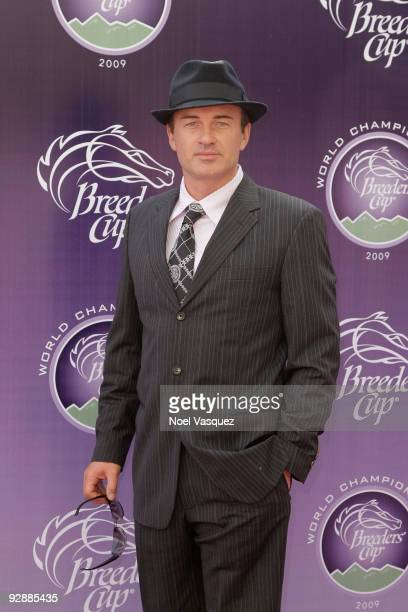 Julian McMahon attends the Breeders' Cup World Thoroughbred Championships at Santa Anita Park on November 7 2009 in Los Angeles California