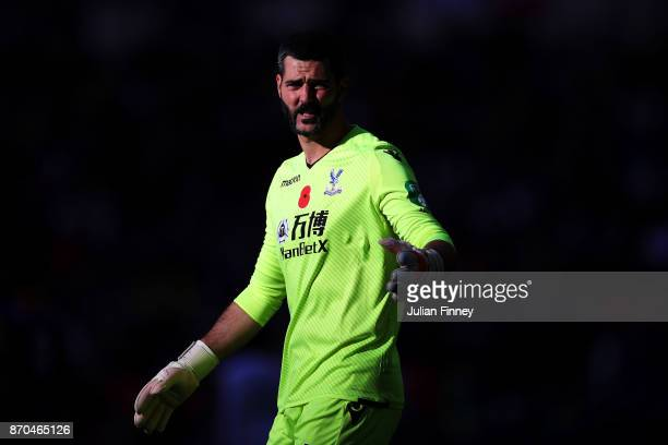 Julian Speroni of Crystal Palace looks on during the Premier League match between Tottenham Hotspur and Crystal Palace at Wembley Stadium on November...