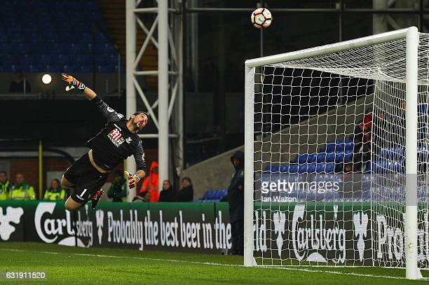 Julian Speroni of Crystal Palace watches as the ball goes in for Bolton first goal during the Emirates FA Cup third round replay between Crystal...