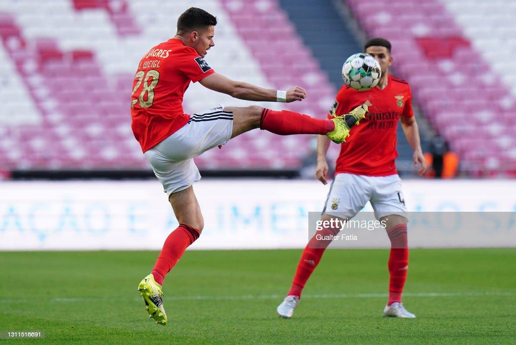 SL Benfica v CS Maritimo - Liga NOS : News Photo