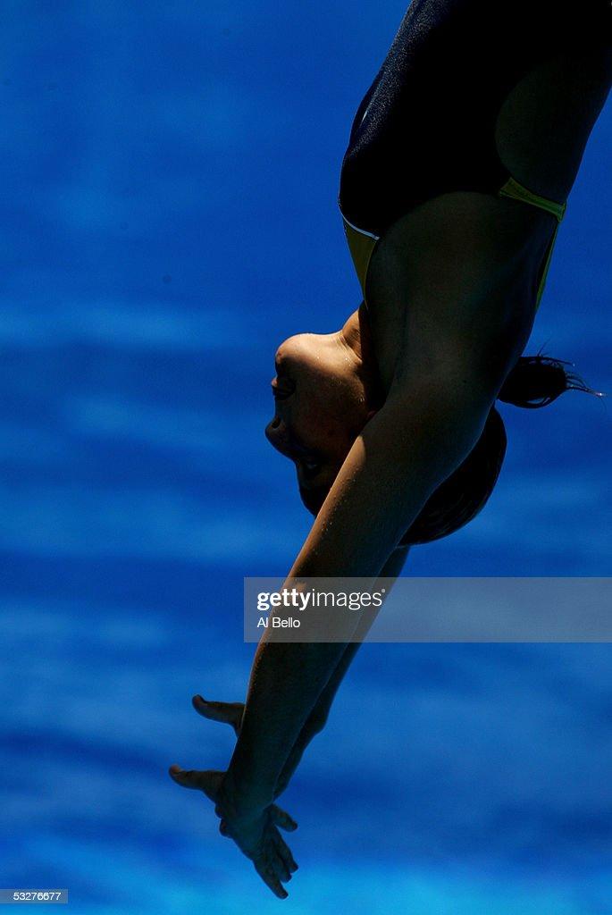 XI FINA World Swimming Championships - Diving : News Photo