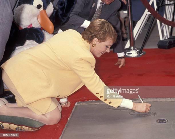 Julie Andrews during Disney Legend Awards October 22 1991 at Disney Studios in Burbank California United States