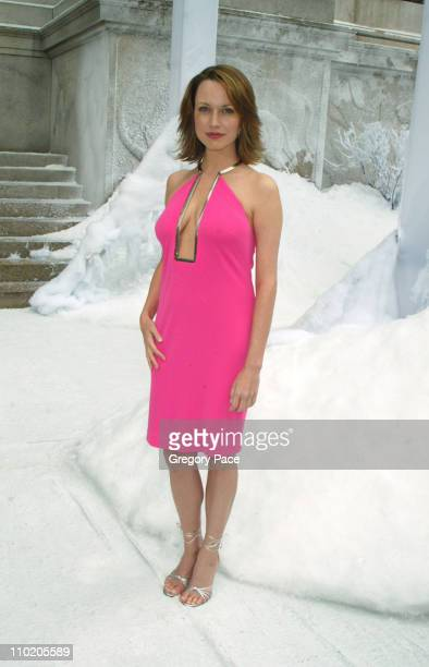 Julie Ann Emery during The Day After Tomorrow New York Premiere Arrivals at American Museum of Natural History in New York City New York United States