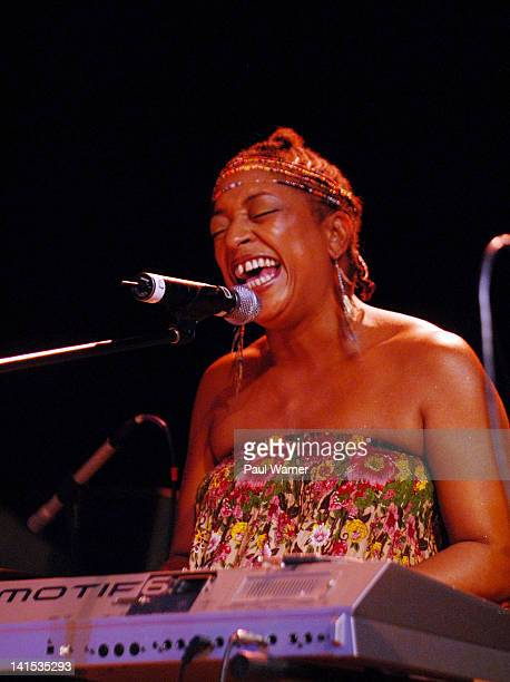 Julie Dexter performs at the Charles H Wright Museum of African American History on March 17 2012 in Detroit Michigan