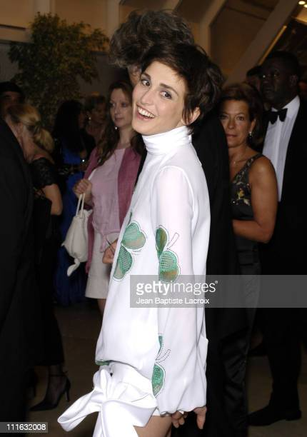 Julie Gayet during 2003 Cannes Film Festival - Opening Night Dinner - Arrivals at Palais des Festivals in Cannes, France.