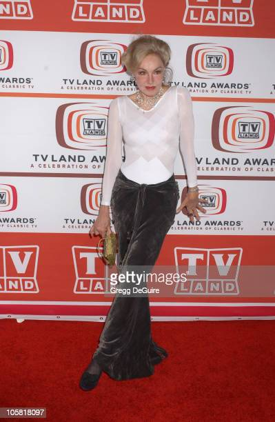 Julie Newmar during 4th Annual TV Land Awards Arrivals at Barker Hangar in Santa Monica California United States
