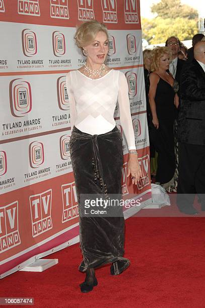Julie Newmar during 4th Annual TV Land Awards Red Carpet at Barker Hanger in Santa Monica California United States