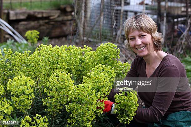 Julie Sumner works on her plot on the Manor Garden Allotments at the heart of the 2012 Olympic site on April 11 2007 in London. Julie has had an...