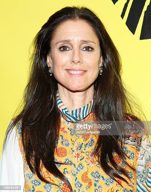 Julie Taymor attends the 'The Lion King' On Broadway 15th Anniversary Celebration at the Minskoff Theatre on November 18 2012 in New York City