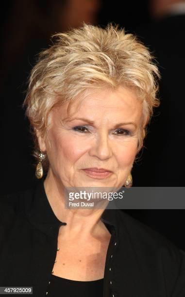 "Julie Walters attends ""The Harry Hill Movie"" World Premiere at Vue Leicester Square on December 19, 2013 in London, England."