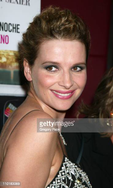 Juliette Binoche wearing a Christian Dior dress during Jet Lag Premiere New York at Bryant Park Hotel in New York City New York United States